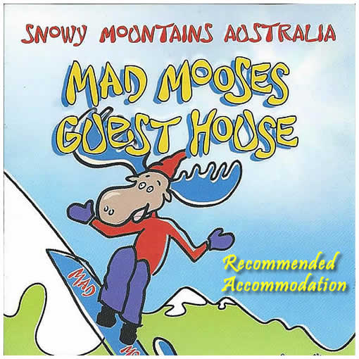 Mad Mooses Guesthouse